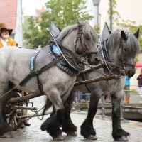 31-07-2016_Wallenstein-Sommer-2016_Memmingen_Auszug-Wallenstein_Poeppel_0111