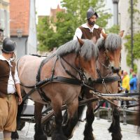 31-07-2016_Wallenstein-Sommer-2016_Memmingen_Auszug-Wallenstein_Poeppel_0641