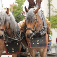 31-07-2016_Wallenstein-Sommer-2016_Memmingen_Auszug-Wallenstein_Poeppel_0662