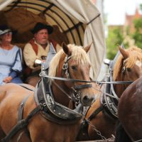 31-07-2016_Wallenstein-Sommer-2016_Memmingen_Auszug-Wallenstein_Poeppel_0687
